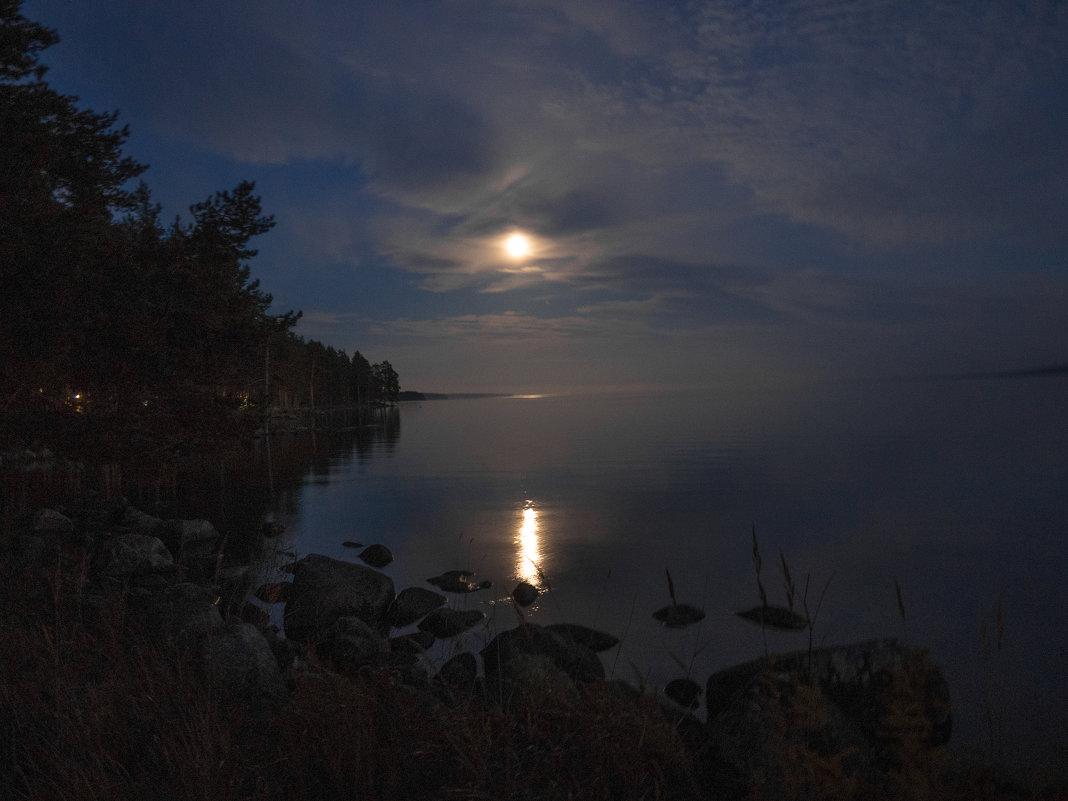 Лунная ночь - Софья Борисова