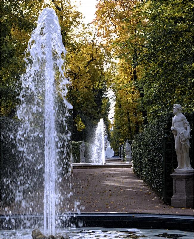 Осень в летнем саду. - Александр