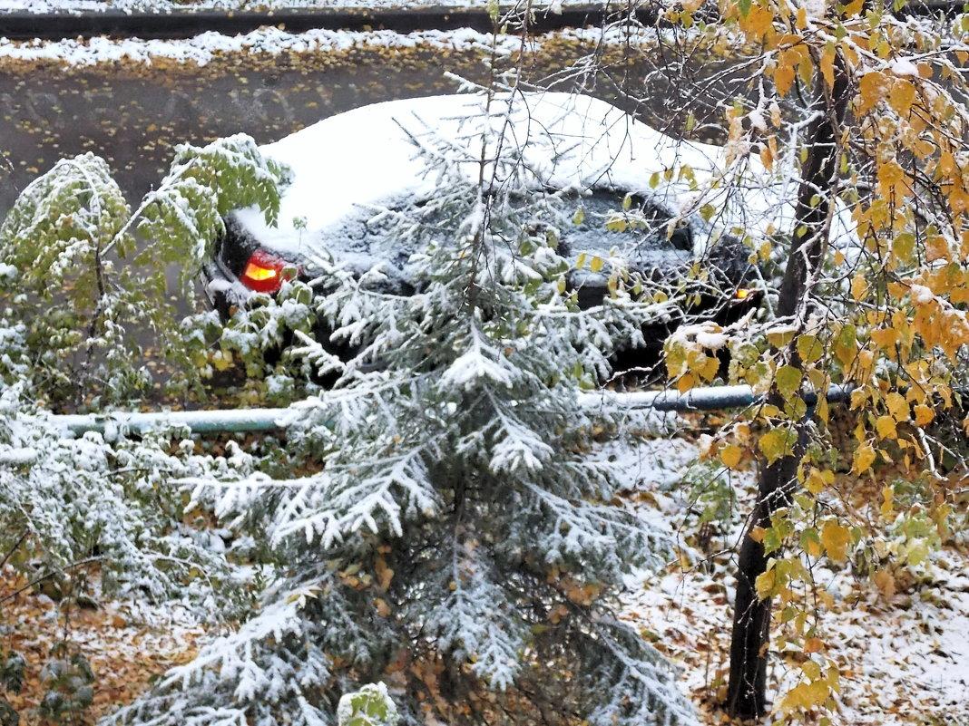 Выпал первый снег - Domna Kuznechic
