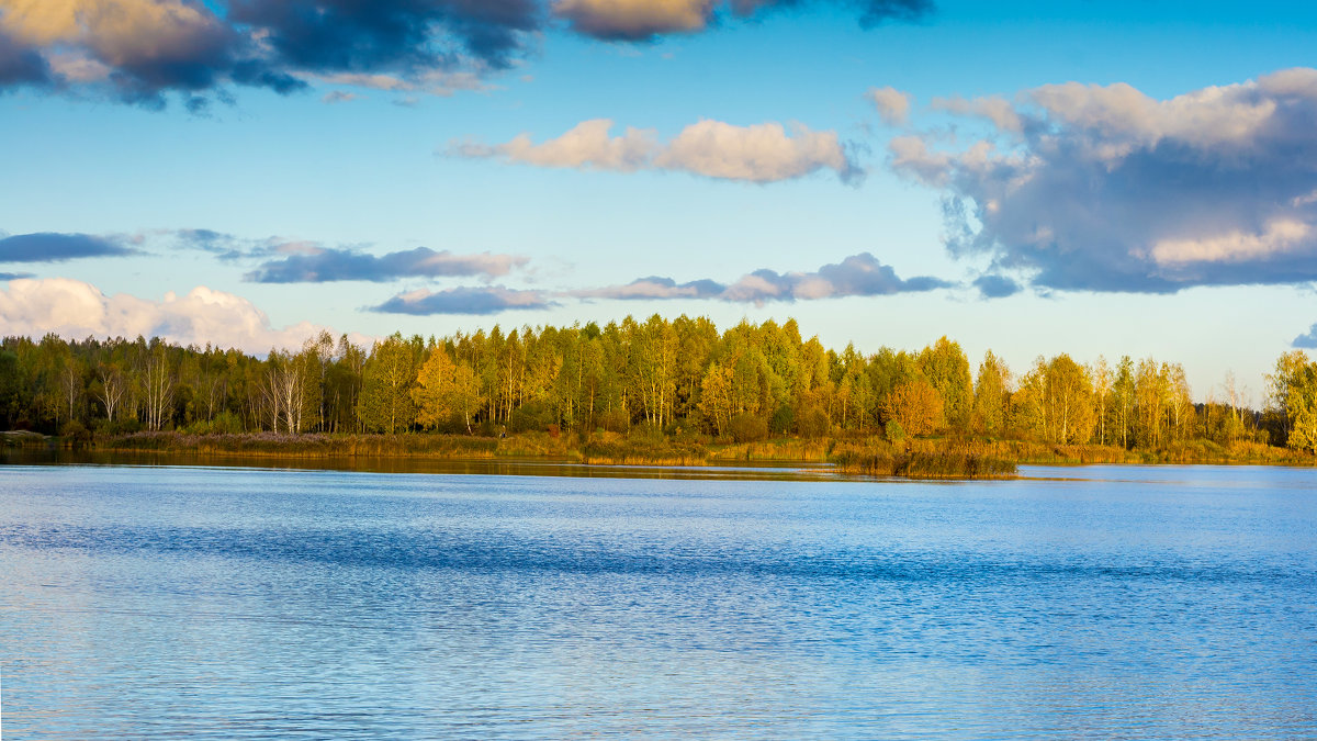 Лесное озеро. - Владимир Лазарев