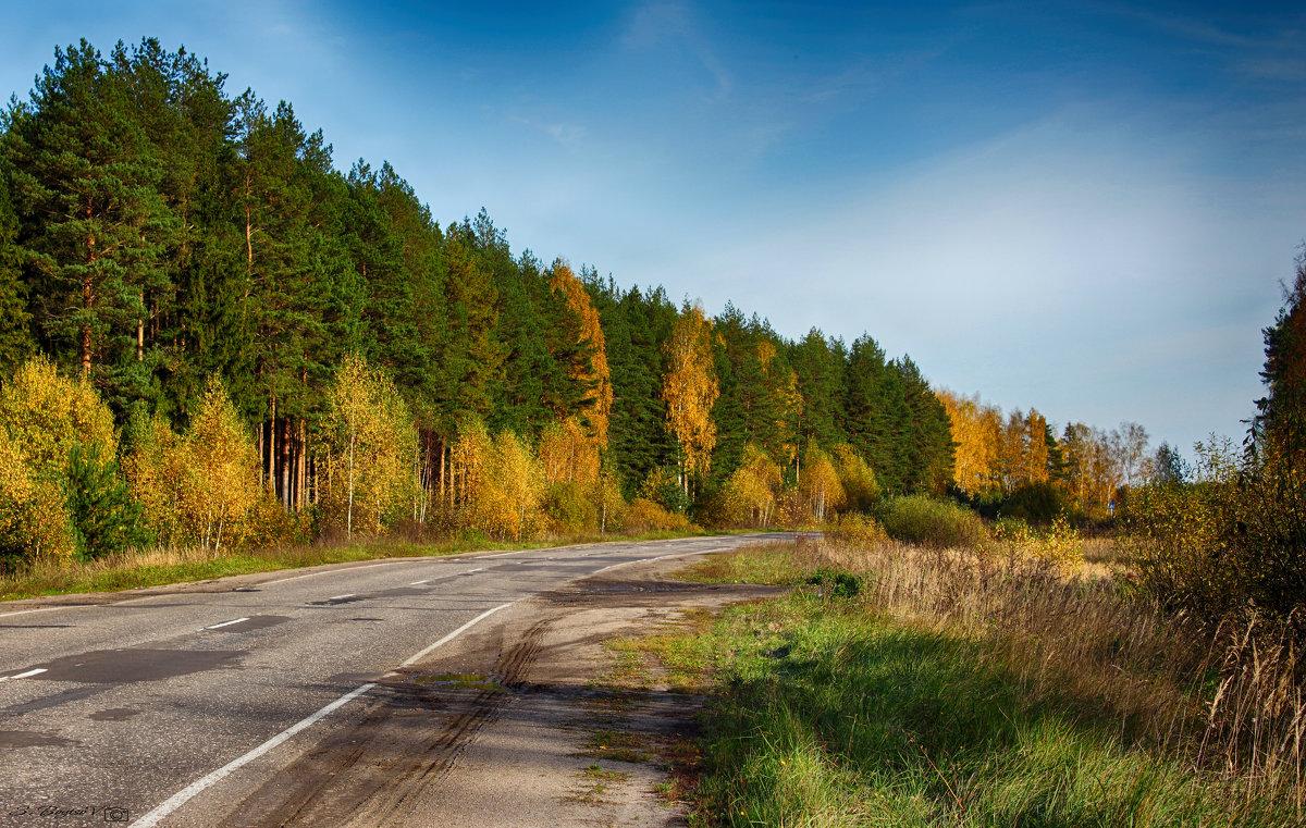 дорога сквозь краски осени - Сергей Бойцов