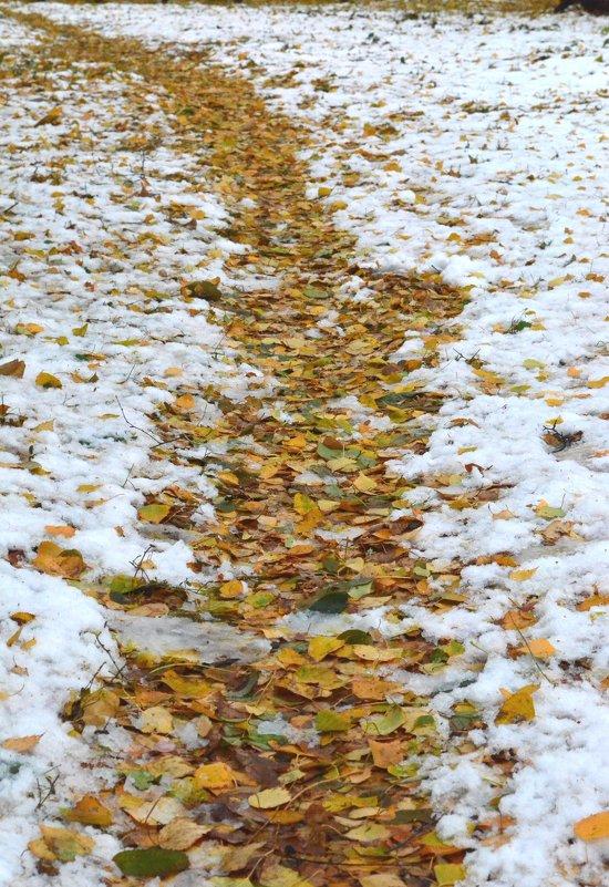 Из осени в зиму.. - Savayr