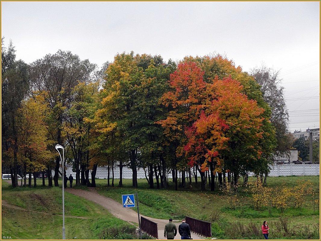 Муринский парк - Вера