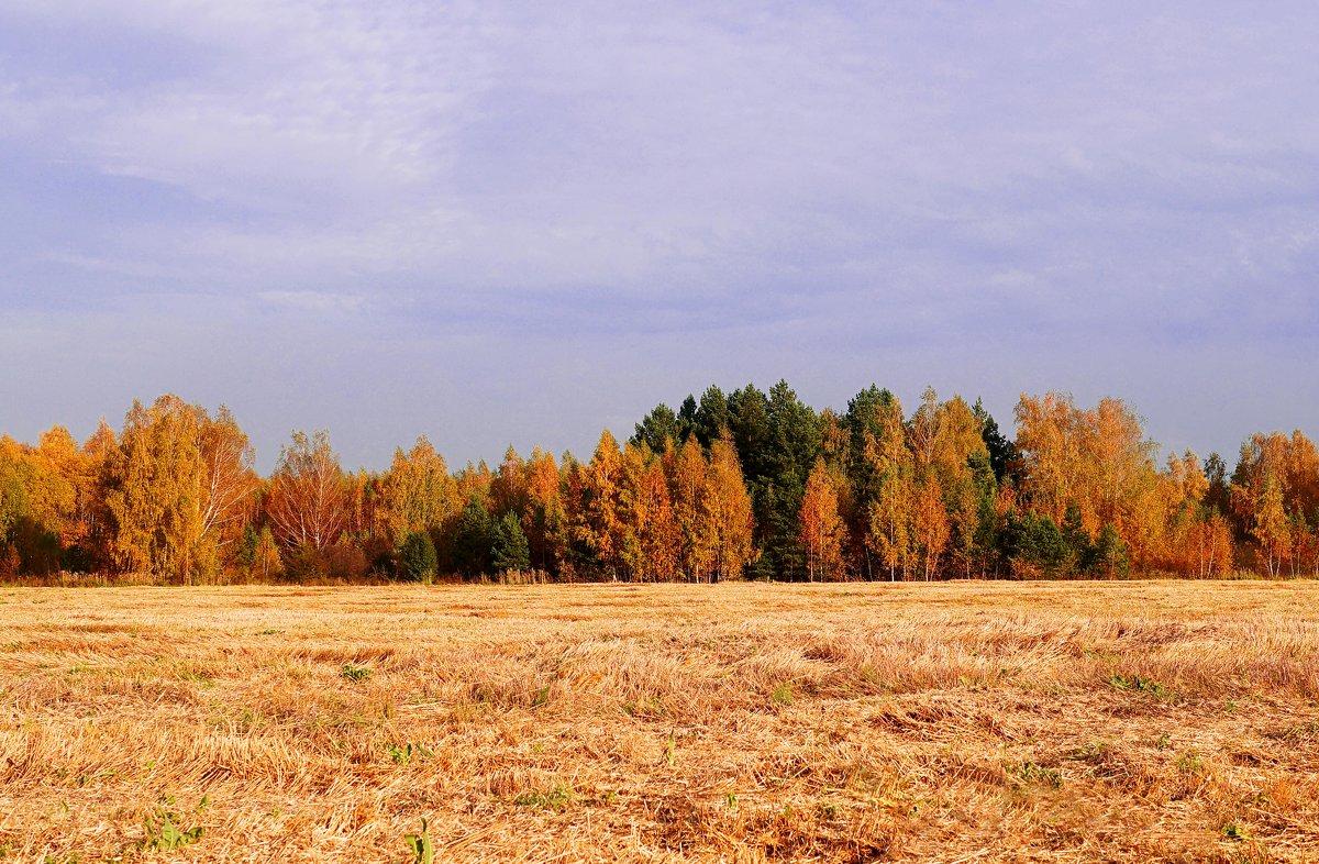 Осень - Vladimir Smirnov