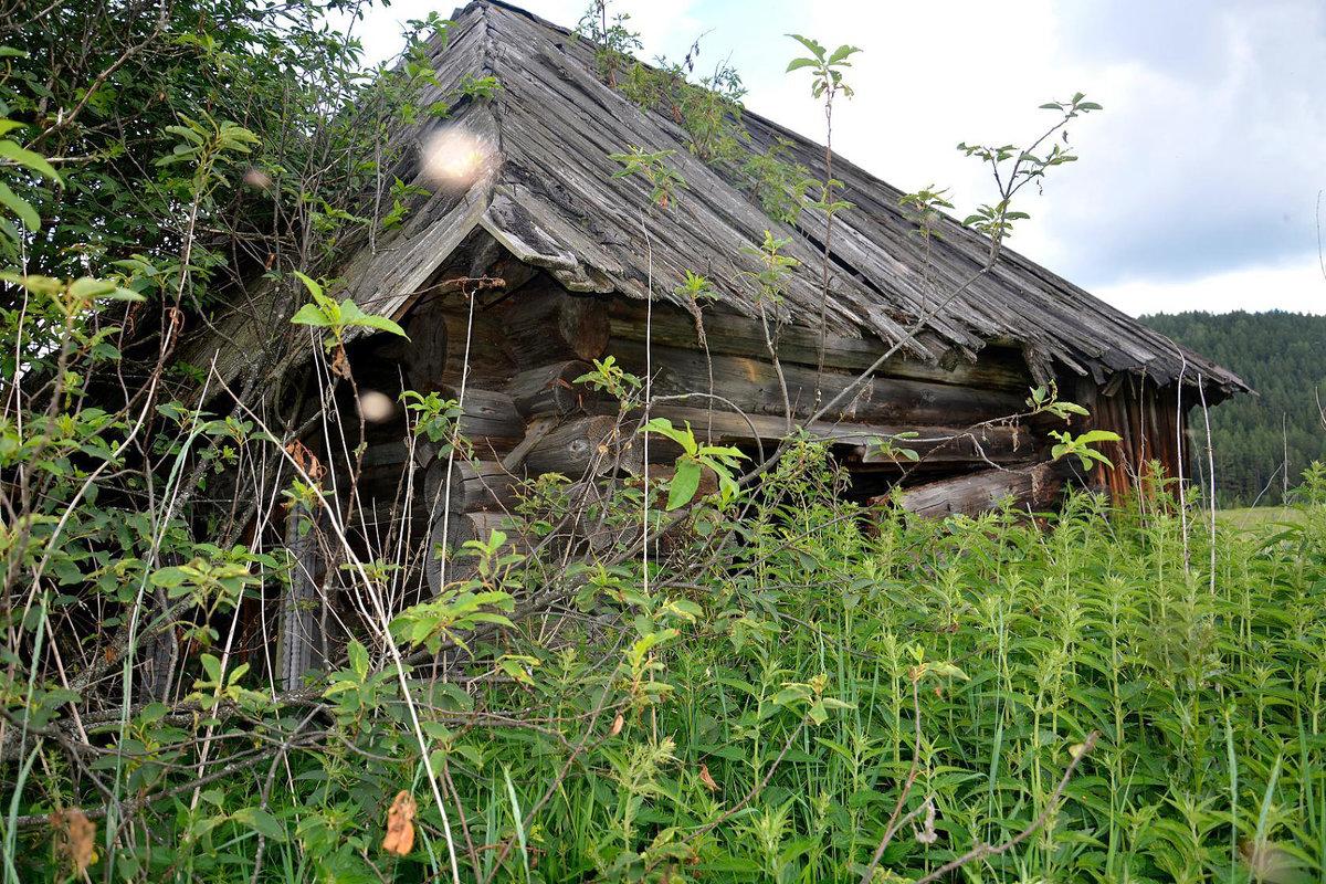 Заброшенный Старый Дом... - Дмитрий Петренко