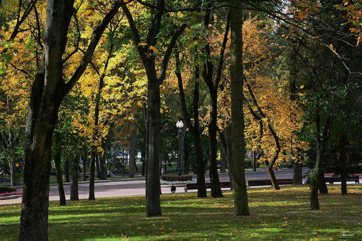 Осенний парк. - Paparazzi