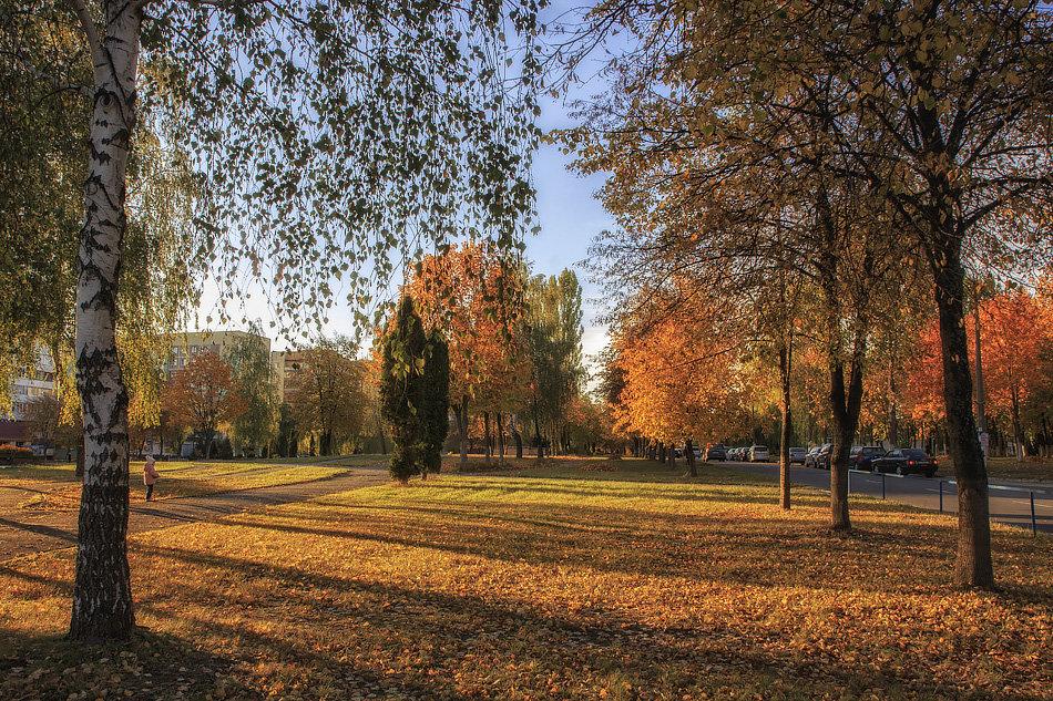 Осень в городе - Ирина Приходько