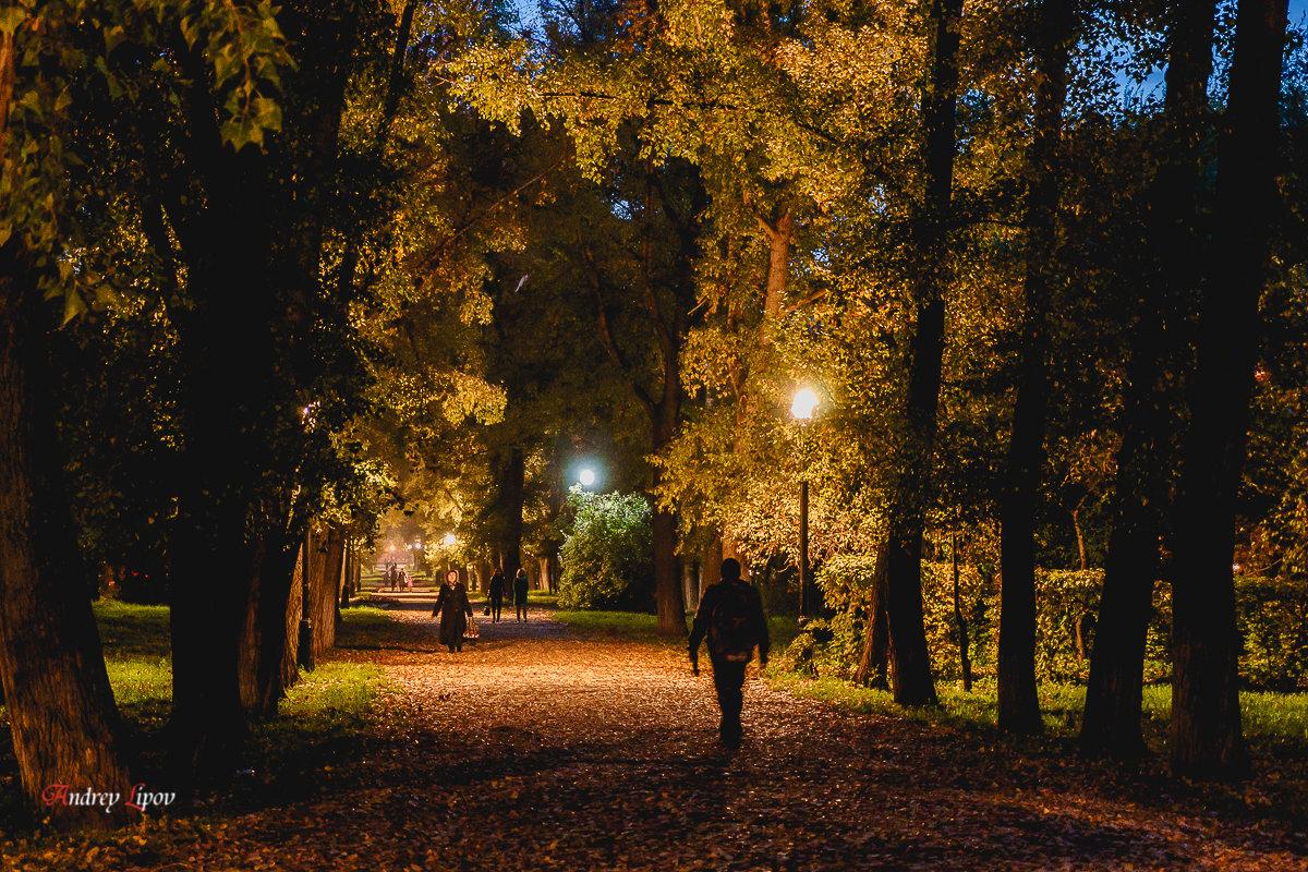 Вечерний парк - Андрей Липов