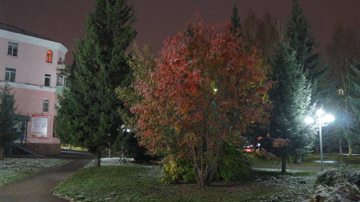 ночные краски осени... - Alexandr Staroverov