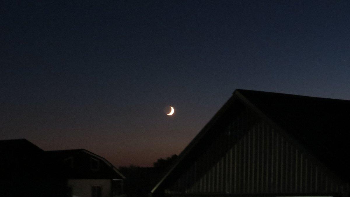 Ночь, луна - Вера Щукина