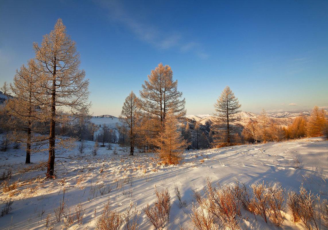 На горы зимние, взор Ваш, пусть неутомимым будет - Сергей Жуков