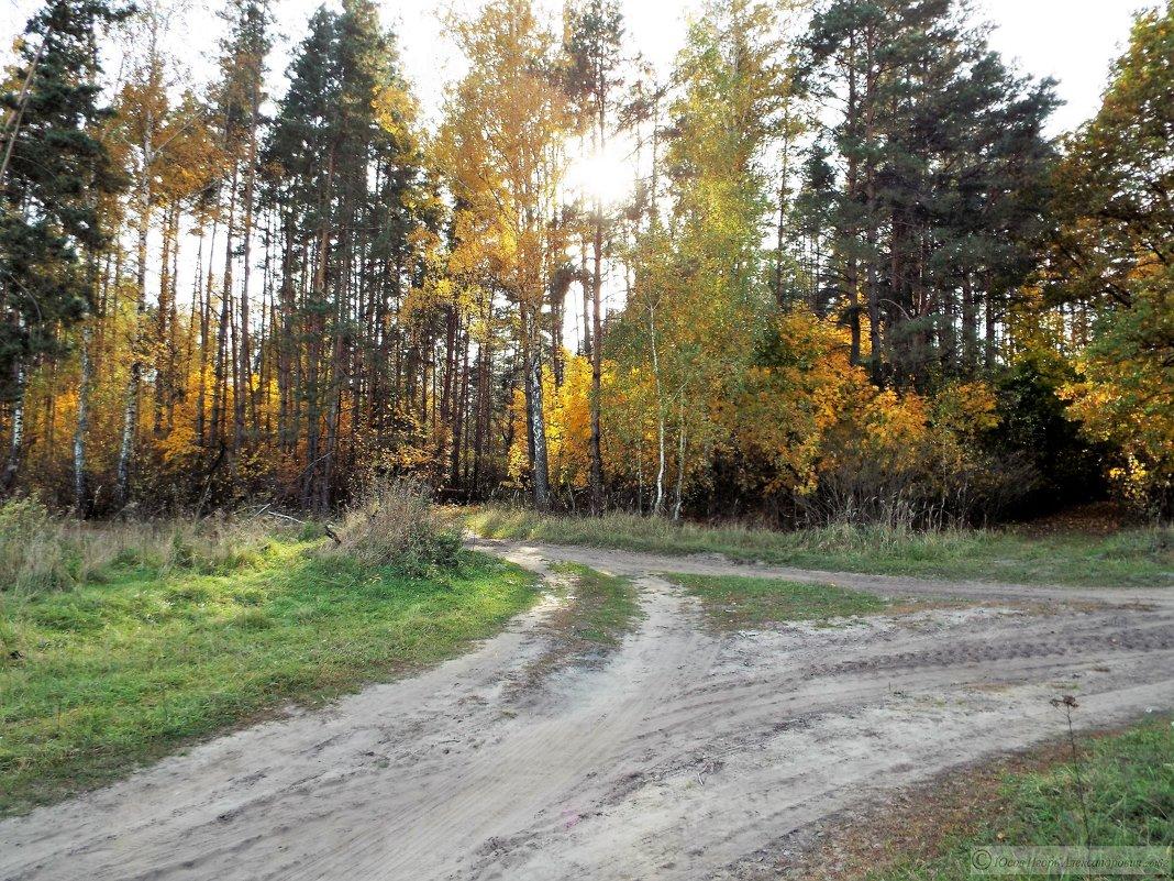 Завтра придет унылая осень - Игорь Юсов