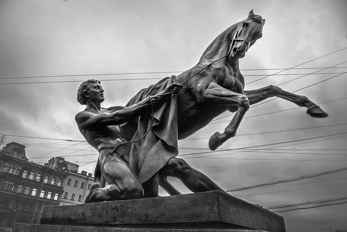 ***Укротитель коня. - mikhail grunenkov