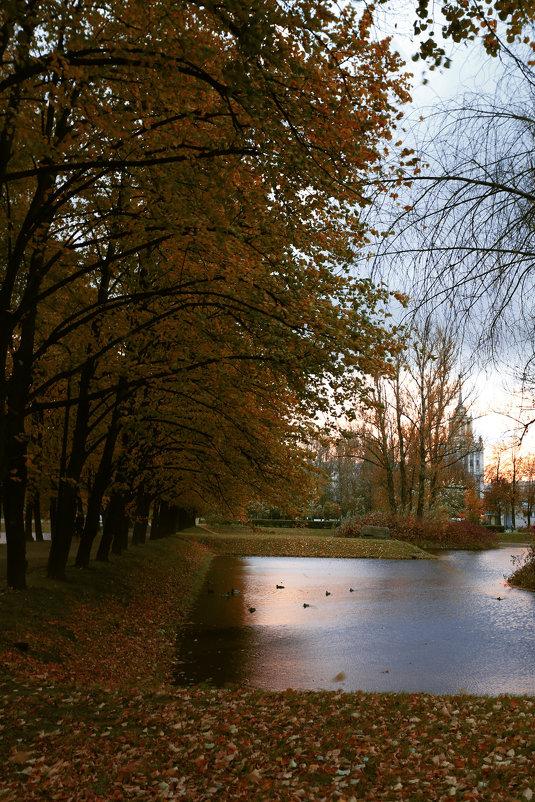 Вечерний парк - Владимир Д