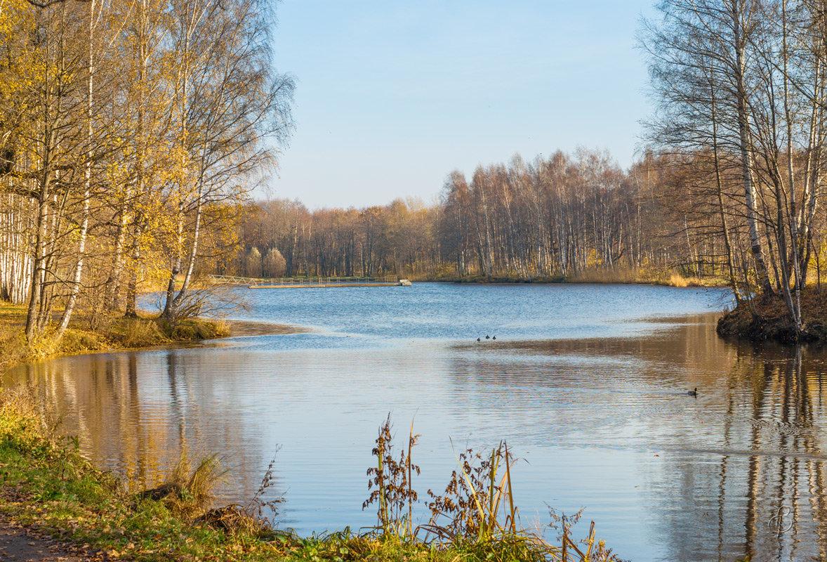 Прозрачная осень - Виталий