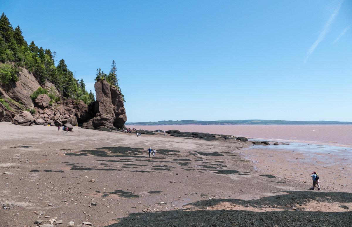 Идём по дну океана к одной из удивительных скал Hopewell Cape Rocks (залив Фунди, Канада) - Юрий Поляков