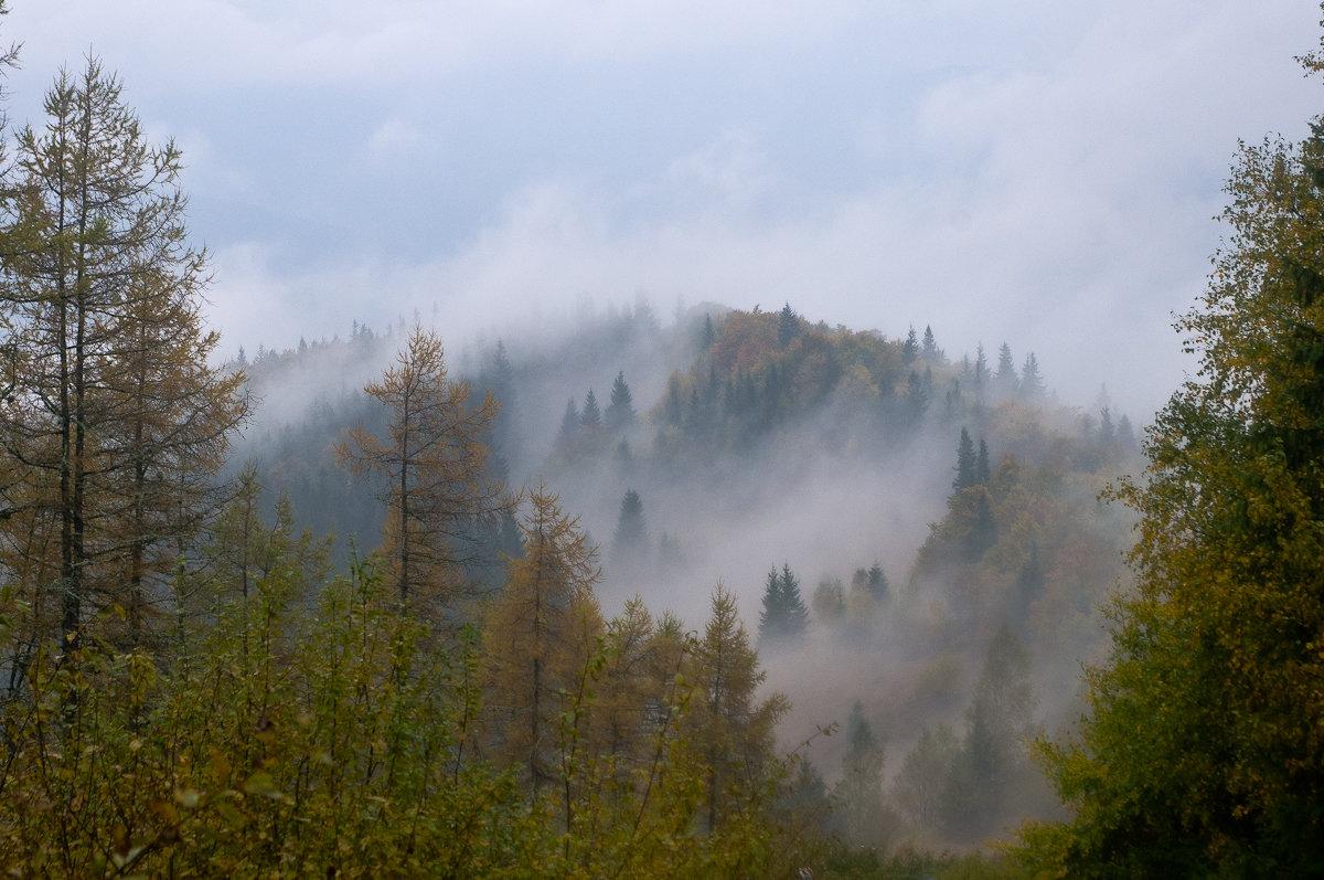 Дождливый день в Карпатах - Александр Крупский