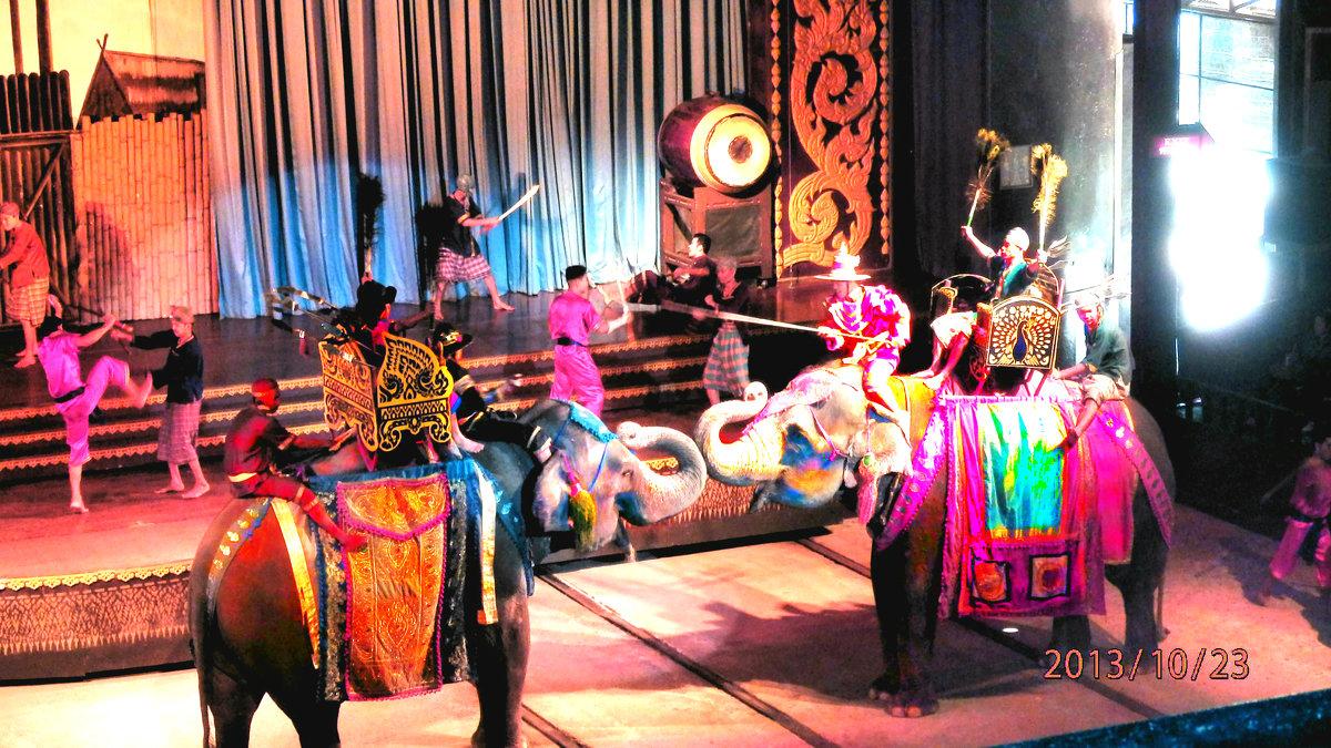 театр со слонами - Таня