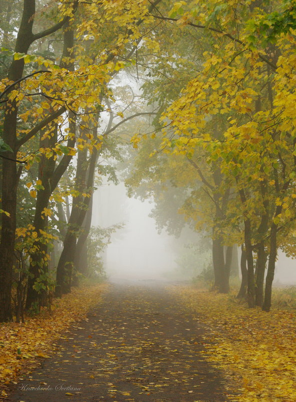 Портал в Осень - Svetlana Kravchenko