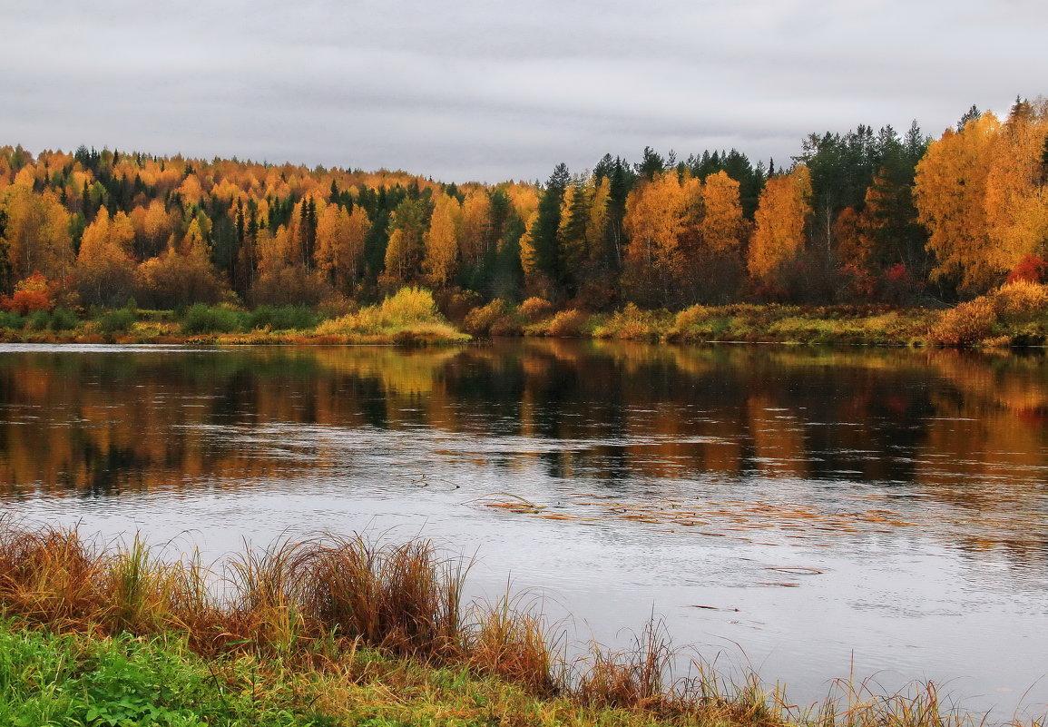 Осень - Галина Новинская