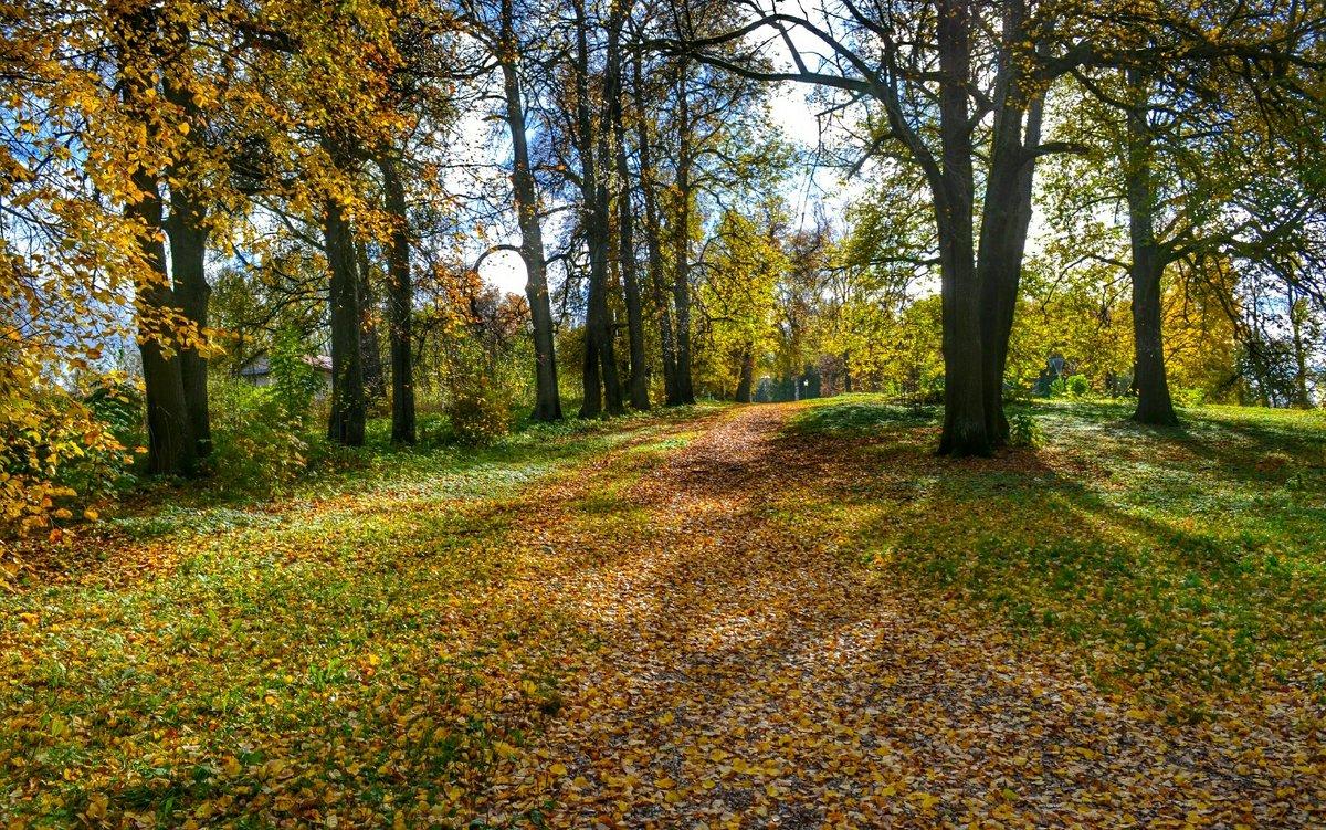 Осень на Смоленщине (7) - Милешкин Владимир Алексеевич