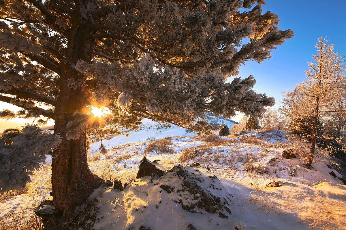 На горы зимние, взор Ваш, пусть неутомимым будет 8 - Сергей Жуков