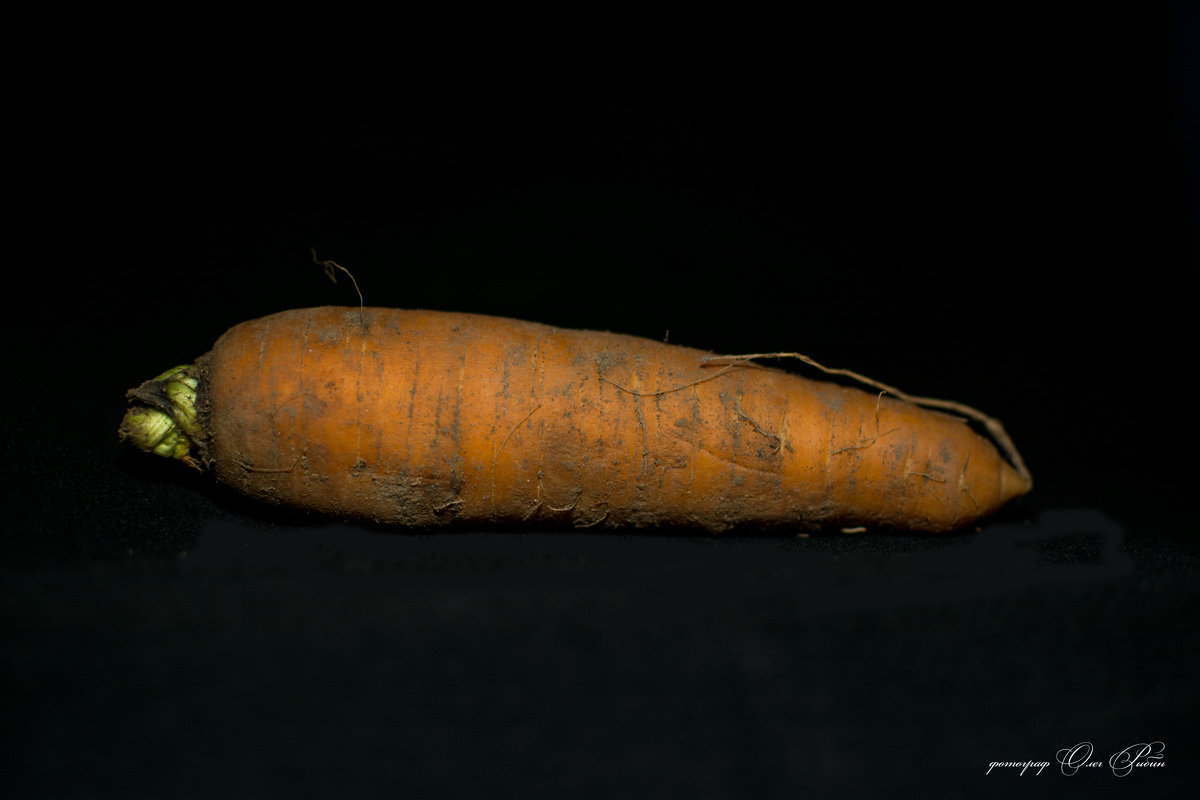 морковка - олег