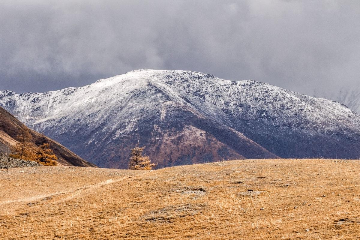 осень в горах Алтая - Галина Шепелева