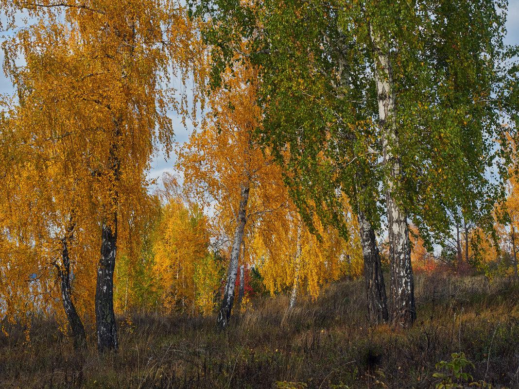 В октябре. - Сергей Адигамов