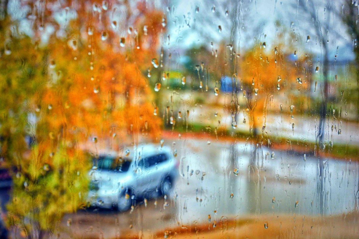 Дождь - Юрий Фёдоров