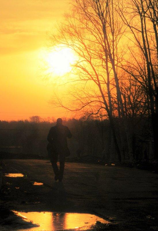 На закате дня - Николай Сапегин