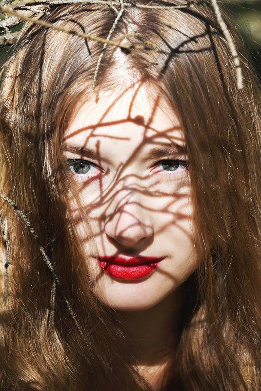 лесной портрет - Оксана Бурьян