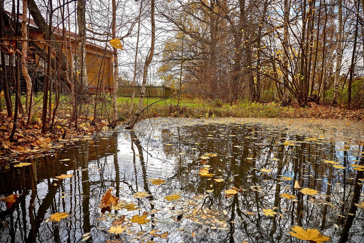 Домик в деревне - Сергей Козлов