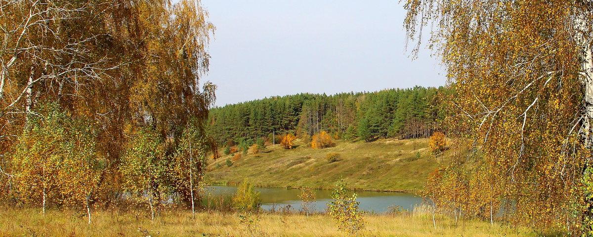 Осенний пейзаж. - Борис Митрохин