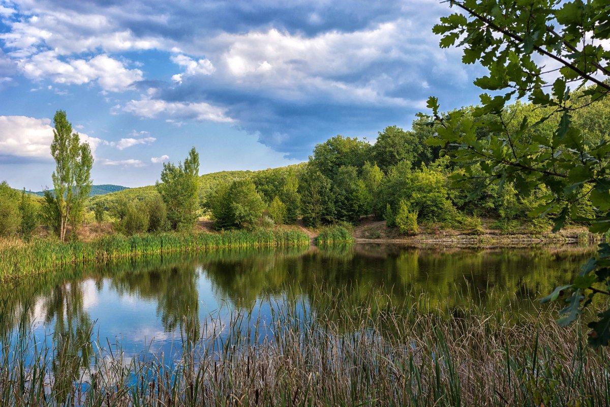 Лесное озеро - Ольга