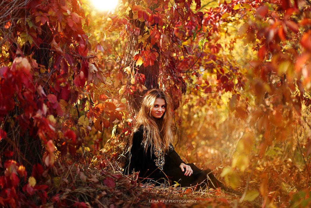 осенняя красота - Лена КЕВ