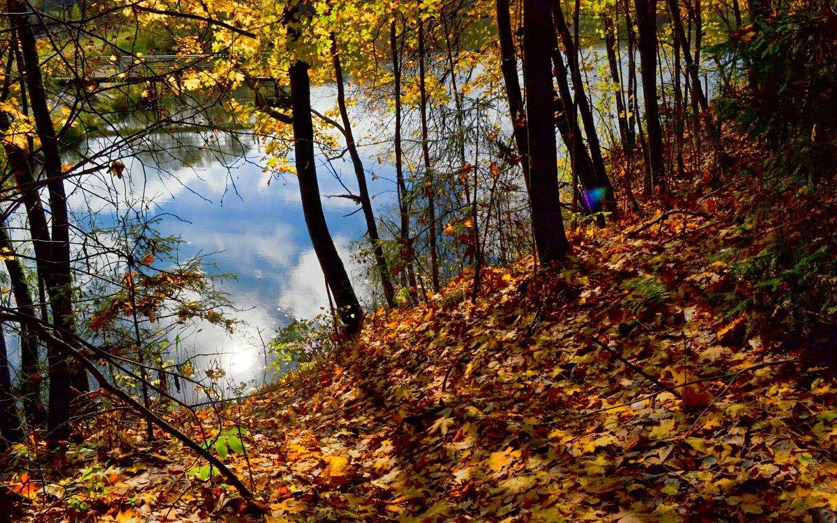 Осень на Смоленщине (11) - Милешкин Владимир Алексеевич