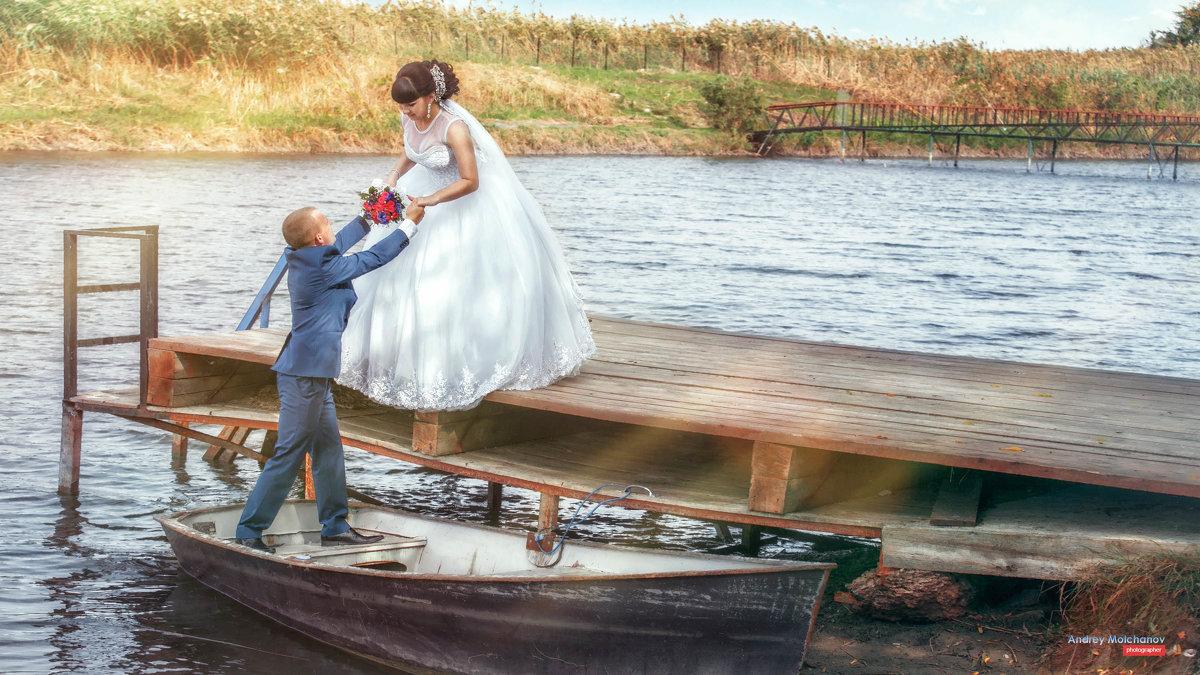 Свадьба Дмитрия и Елены - Андрей Молчанов