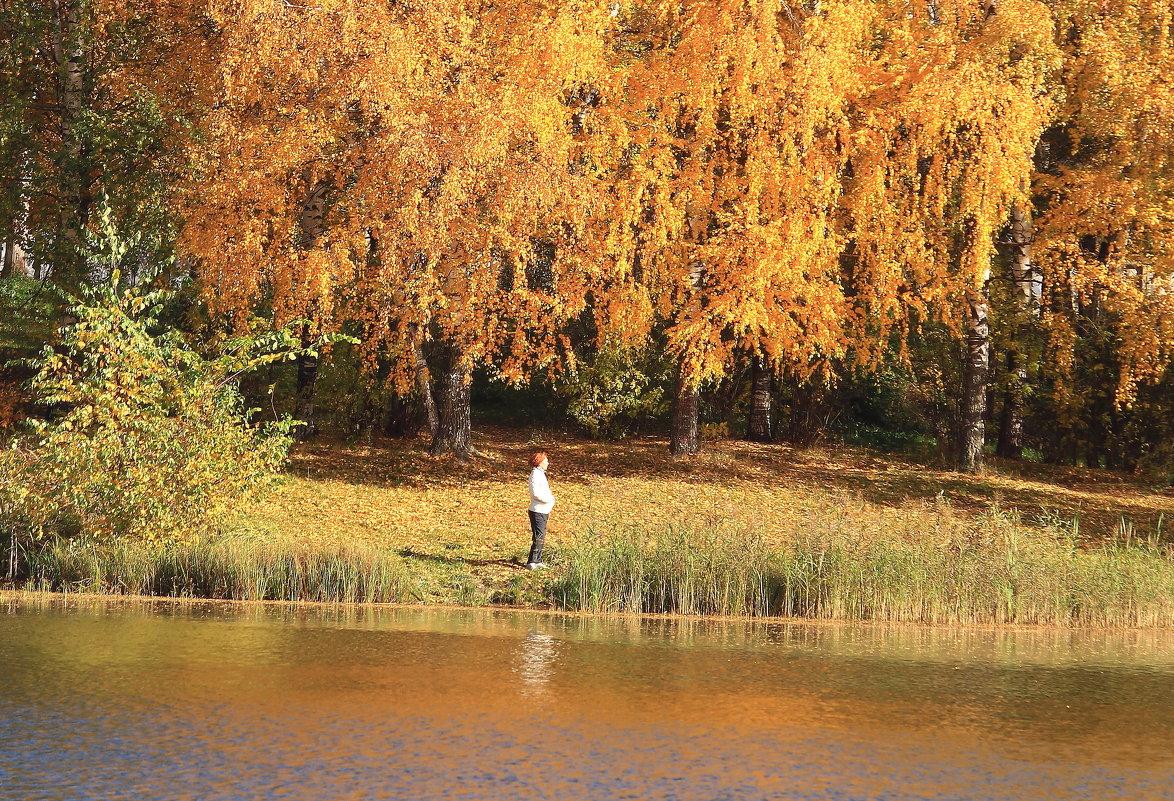 Наедине с осенью - Татьяна Ломтева