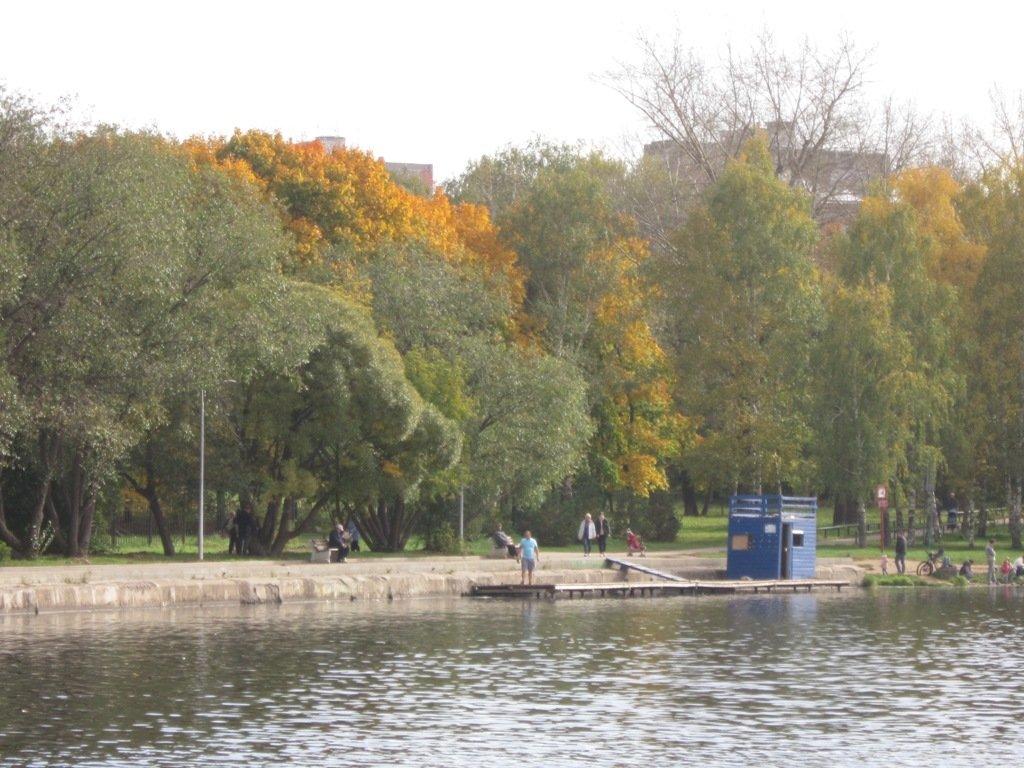 Начало октября - Дмитрий Никитин