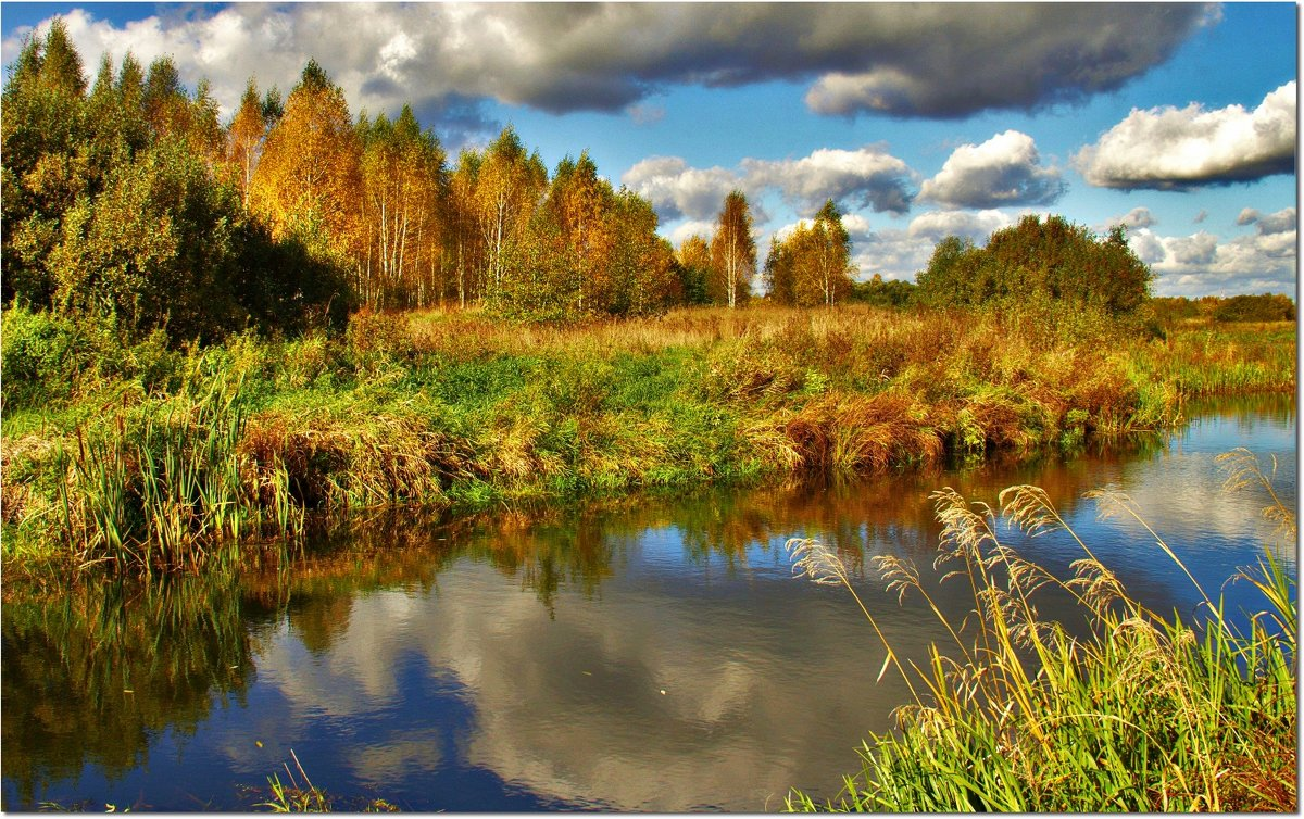 Позолотила березки осень - Вячеслав Минаев