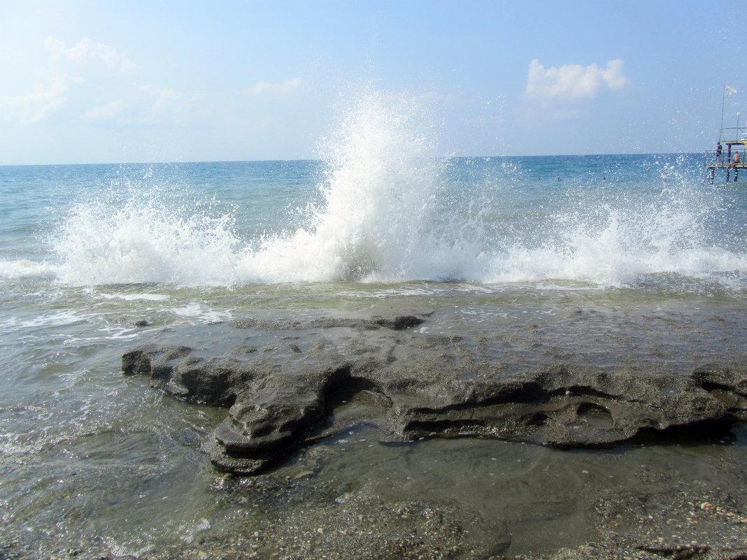 море волнуется три - tgtyjdrf