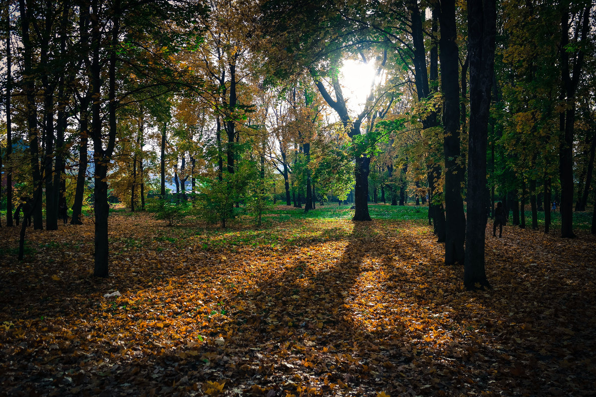 Осенний парк. - Александр Селезнев