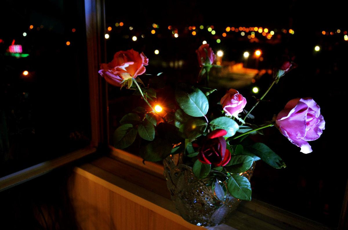 Серенада ночи для любимых роз... - Татьяна