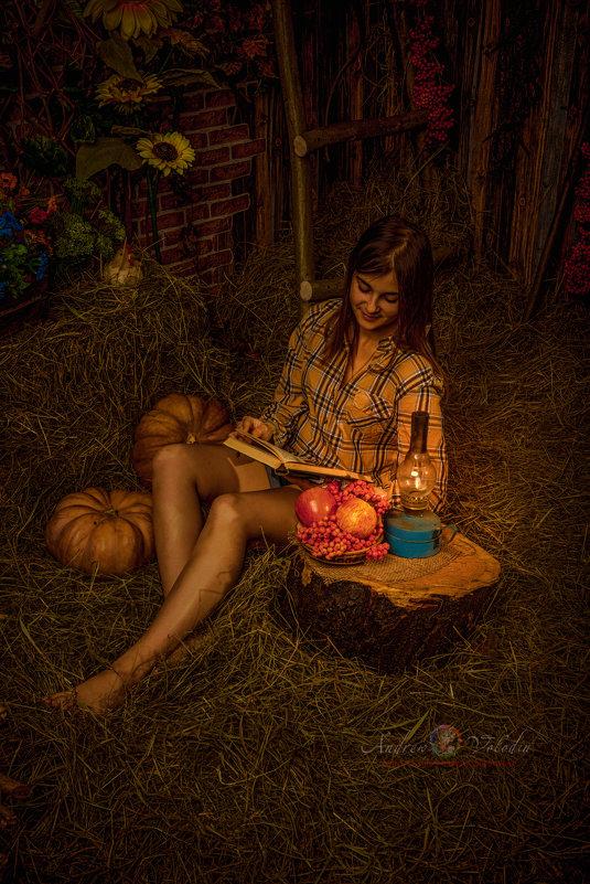ночные чтения - Андрей Володин