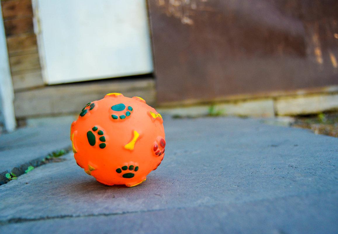 мячик нашей собаки - Света Кондрашова