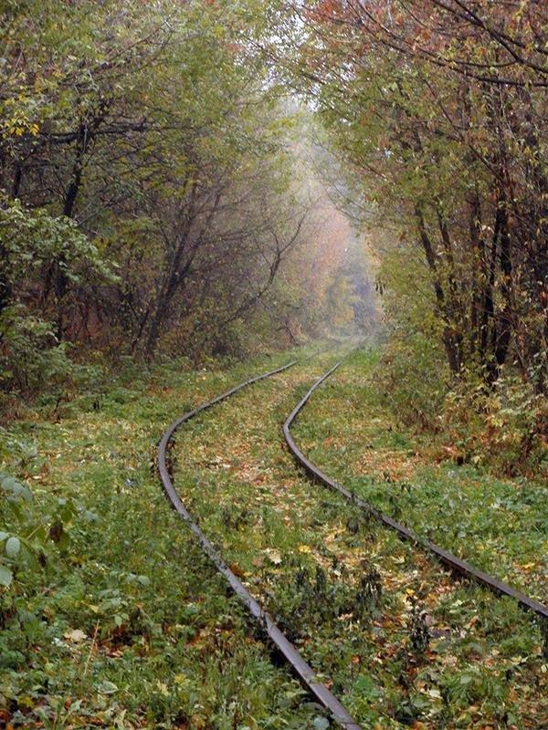 Тихая дорога - Сергей Тарабара