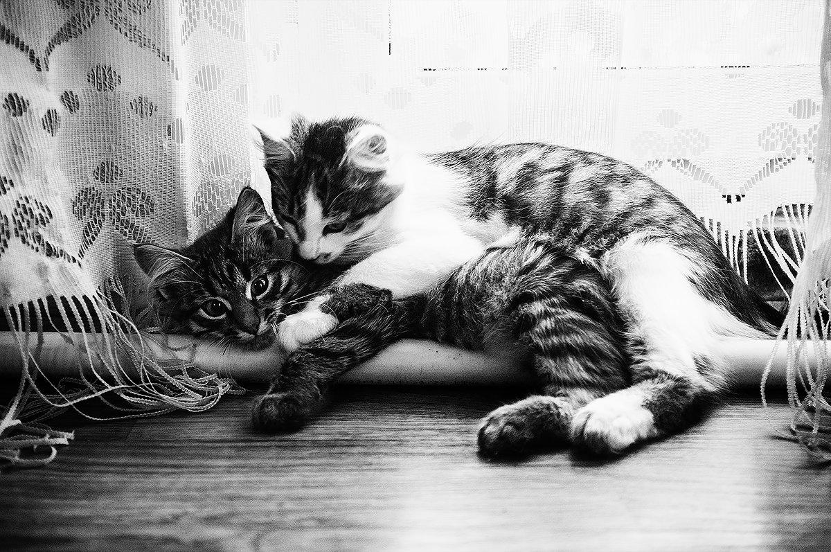Hugs - Мария Крючкова