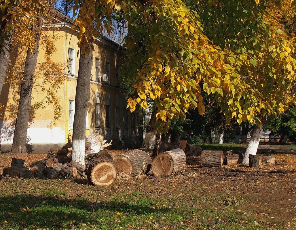 осень в городе - Ирина ***