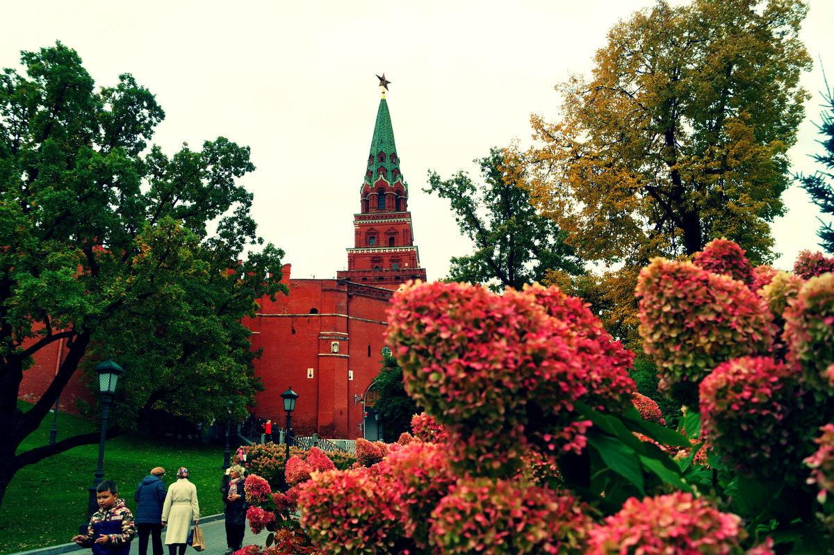 Aleksandrovski сад - Йована Марьянович